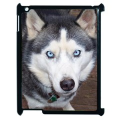 Siberian Husky Blue Eyed Apple iPad 2 Case (Black)