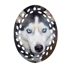 Siberian Husky Blue Eyed Ornament (Oval Filigree)
