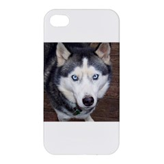 Siberian Husky Blue Eyed Apple iPhone 4/4S Hardshell Case