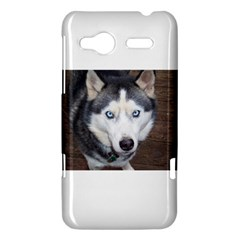 Siberian Husky Blue Eyed HTC Radar Hardshell Case