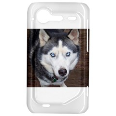 Siberian Husky Blue Eyed HTC Incredible S Hardshell Case