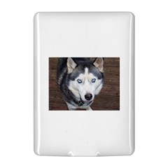 Siberian Husky Blue Eyed Kindle 4
