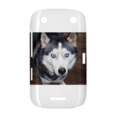 Siberian Husky Blue Eyed BlackBerry Curve 9380