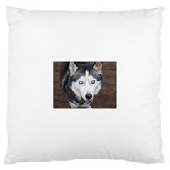 Siberian Husky Blue Eyed Large Cushion Case (One Side)
