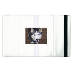 Siberian Husky Blue Eyed Apple iPad 3/4 Flip Case