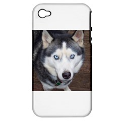 Siberian Husky Blue Eyed Apple iPhone 4/4S Hardshell Case (PC+Silicone)