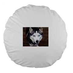 Siberian Husky Blue Eyed Large 18  Premium Round Cushions