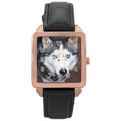 Siberian Husky Blue Eyed Rose Gold Leather Watch