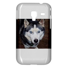 Siberian Husky Blue Eyed Samsung Galaxy Ace Plus S7500 Hardshell Case