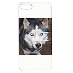 Siberian Husky Blue Eyed Apple iPhone 5 Hardshell Case with Stand