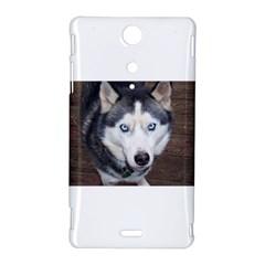 Siberian Husky Blue Eyed Sony Xperia TX