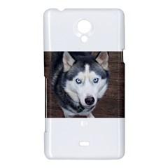 Siberian Husky Blue Eyed Sony Xperia T