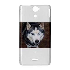 Siberian Husky Blue Eyed Sony Xperia V