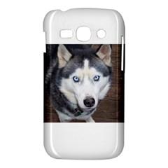 Siberian Husky Blue Eyed Samsung Galaxy Ace 3 S7272 Hardshell Case