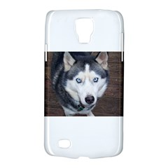 Siberian Husky Blue Eyed Galaxy S4 Active