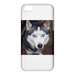 Siberian Husky Blue Eyed Apple iPhone 5C Hardshell Case