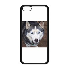 Siberian Husky Blue Eyed Apple iPhone 5C Seamless Case (Black)