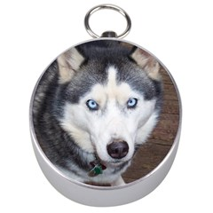 Siberian Husky Blue Eyed Silver Compasses