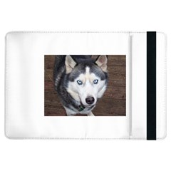 Siberian Husky Blue Eyed iPad Air Flip