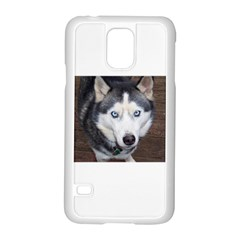 Siberian Husky Blue Eyed Samsung Galaxy S5 Case (White)