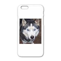 Siberian Husky Blue Eyed Apple iPhone 6/6S White Enamel Case
