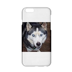 Siberian Husky Blue Eyed Apple iPhone 6/6S Hardshell Case