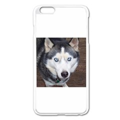 Siberian Husky Blue Eyed Apple iPhone 6 Plus/6S Plus Enamel White Case