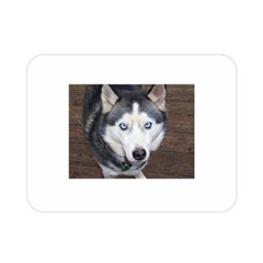 Siberian Husky Blue Eyed Double Sided Flano Blanket (Mini)