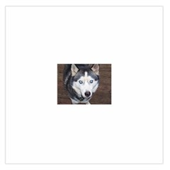 Siberian Husky Blue Eyed Large Satin Scarf (Square)
