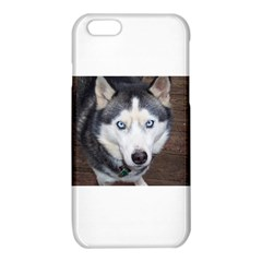 Siberian Husky Blue Eyed iPhone 6/6S TPU Case