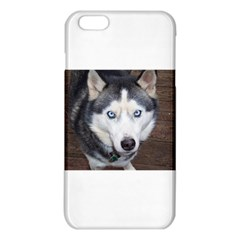 Siberian Husky Blue Eyed iPhone 6 Plus/6S Plus TPU Case