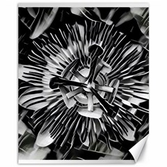 Black And White Passion Flower Passiflora  Canvas 11  X 14