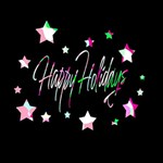 Happy Holidays 5 BEST SIS 3D Greeting Card (8x4) Inside