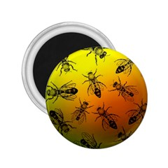 Insect Pattern 2 25  Magnets