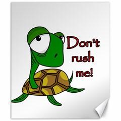 Turtle Joke Canvas 20  X 24