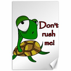 Turtle Joke Canvas 20  X 30