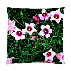 Pink Flowers Over A Green Grass Standard Cushion Case (one Side)