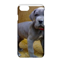 Great Dane Puppy Blue Apple iPhone 7 Hardshell Case
