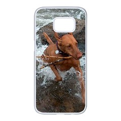Vizsla Fetching In Water Samsung Galaxy S7 edge White Seamless Case