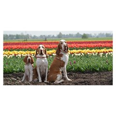 Bracco Italiano Group YOU ARE INVITED 3D Greeting Card (8x4)