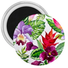 Vector Pattern Tropical 3  Magnets