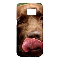 Chocolate Lab Samsung Galaxy S7 Edge Hardshell Case