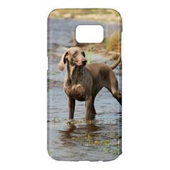 Weimaraner In Water Samsung Galaxy S7 Edge Hardshell Case
