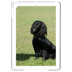 Black Cocker Spaniel Sitting Apple iPad Pro 9.7   Hardshell Case