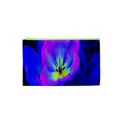 Blue And Purple Flowers Cosmetic Bag (xs)