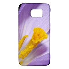 Purple Crocus Galaxy S6