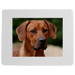 2 Rhodesian Ridgeback Jigsaw Puzzle Photo Stand (rectangular)