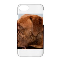 Dogue De Bordeaux 2 Apple iPhone 7 Hardshell Case