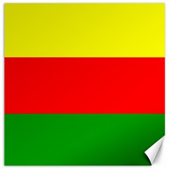Kurdistan Kurd Kurds Kurdish Flag Canvas 20  X 20