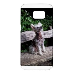 Chinese Crested Dog Sitting 2 Samsung Galaxy S7 Edge Hardshell Case